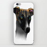 greyhound iPhone & iPod Skins featuring Greyhound BW by Marlene Watson