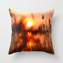 Plants Contre-jour on the Sunset Throw Pillow