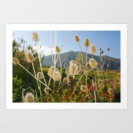 Meadow of Sicilian Spring Art Print