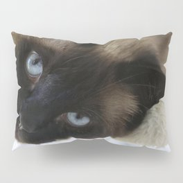 Siamese Soulful Expression Pillow Sham