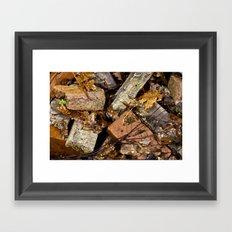 Crushed Fall Framed Art Print