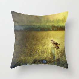 Surveil Throw Pillow