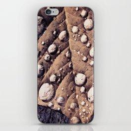 Wet Leaf iPhone Skin