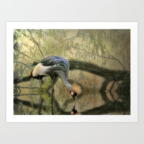 Crane Reflections Art Print