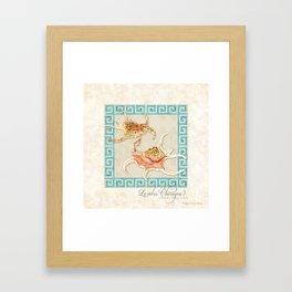 Spider Conch, Lambis Chiragra Modern Ocean Shell Beach Striped Framed Art Print