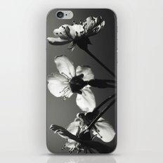 monochrome spring iPhone & iPod Skin