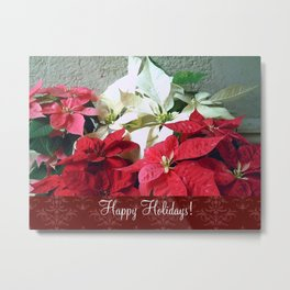 Mixed color Poinsettias 3 Happy Holidays S5F1 Metal Print