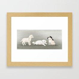 Dog Trio Framed Art Print