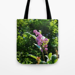 Lingering Propositions Tote Bag