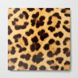 Leopard Pattern Metal Print