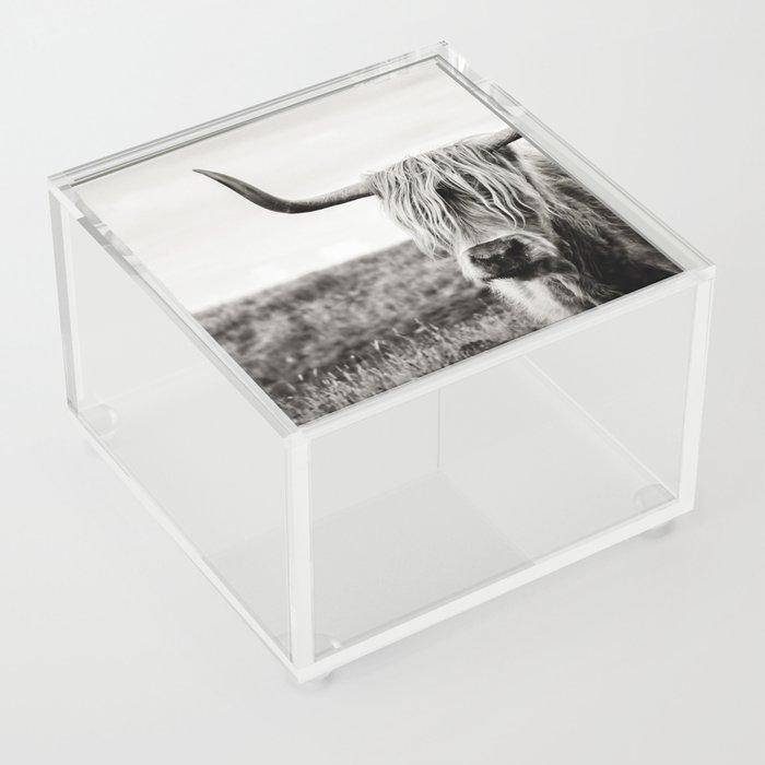 Highland Cow Acrylic Box