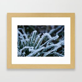 Frosted Grass Framed Art Print