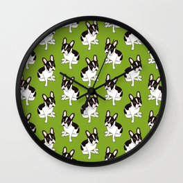 Cute double hooded pied French Bulldog wants your attention Wall Clock