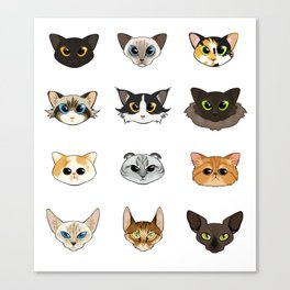 Cats a Plenty Canvas Print