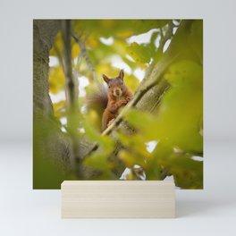 Trees are Home Mini Art Print