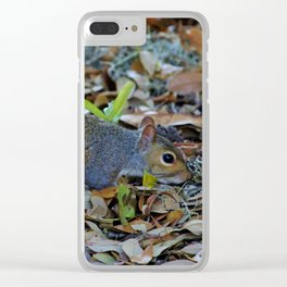 Searching For Food Clear iPhone Case