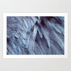 Bird Feather Art | Nursery | Wildlife | Nature Art | Home Decor Art Print