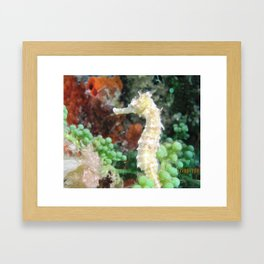 Beauty Below Framed Art Print
