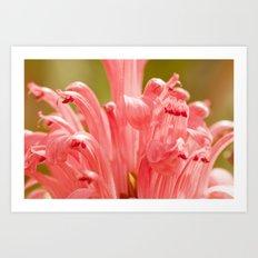 Pink spring 413 Art Print