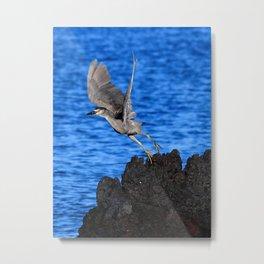 lava takeoff Metal Print