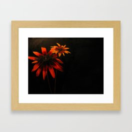 o_010_001 Framed Art Print