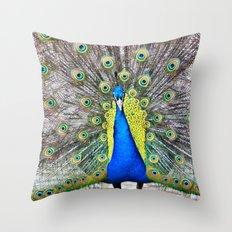 Peacock Display Throw Pillow