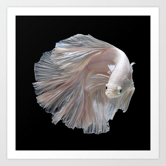 The Game Fish Art Print