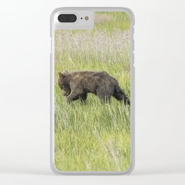 Young Brown Bear Cub, No. 1 Clear iPhone Case