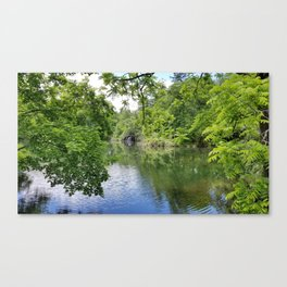 Calm Forestry Canvas Print