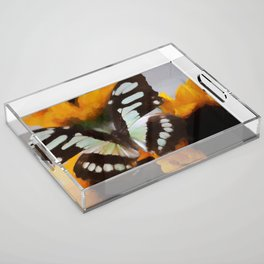 Summer Butterfly Acrylic Tray