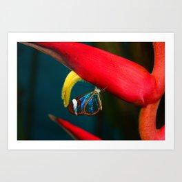 Jungle Butterfly Art Print