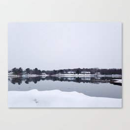 Winter Gaze Canvas Print