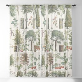 Adolphe Millot - Arbres B - French vintage botanical poster Sheer Curtain