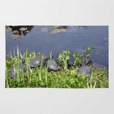 Turtles by a water pond and water plants in a garden.  Nature  photography. Rug