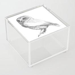 Owl Acrylic Box