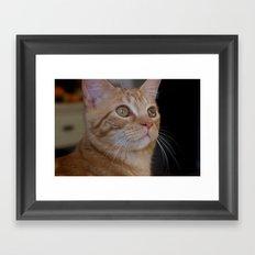 Morris Framed Art Print