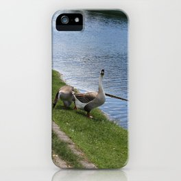 big birds iPhone Case