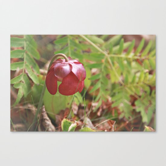 Meat Eater Canvas Print