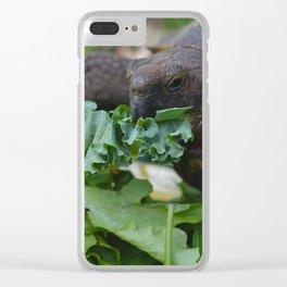 Cute Clear iPhone Case