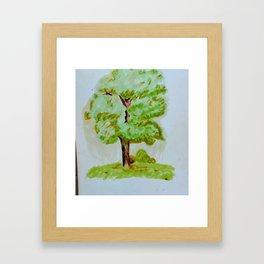 Tree Study 1 Framed Art Print