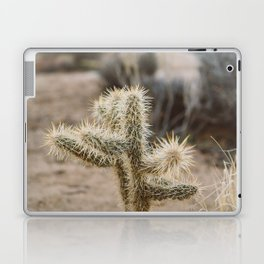 Joshua Tree National Park XVI Laptop & iPad Skin