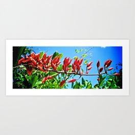 Red Rocket Art Print