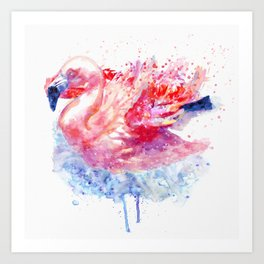 Flamingo on the Water Art Print