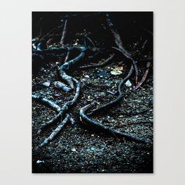 Tendrils Canvas Print