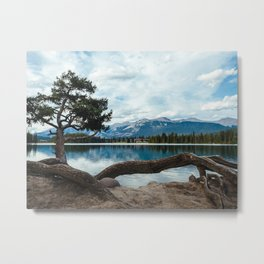 Set down your roots to find peace Metal Print
