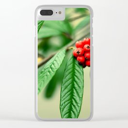 Red and green Clear iPhone Case