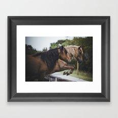 jumping ponies Framed Art Print