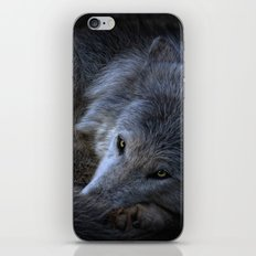 watch your back iPhone & iPod Skin