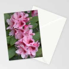 Pink Stationery Cards