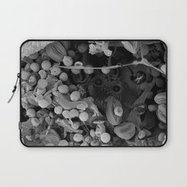 Nocopseudobacillum Laptop Sleeve